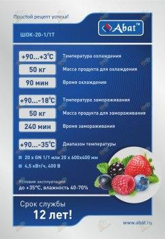 Аппарат шоковой заморозки ШОК-20-1/1Т